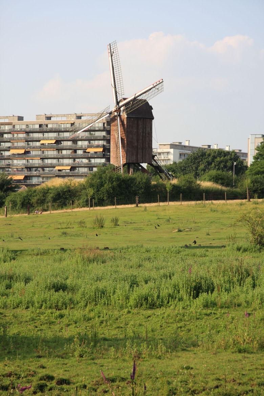 Woluwe-Saint-Lambert-Windmill