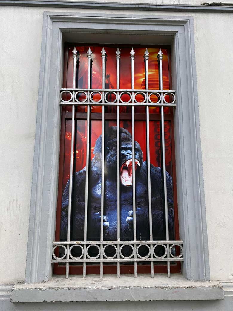 stret art using a barred window to represent a caged gorilla